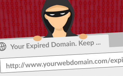 Don't Let Crooks Hijack Your Domain
