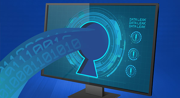 What to Do If Your Data Is Included in a Leak